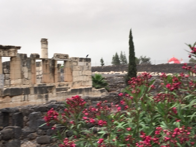 Capernaum near the synagogue