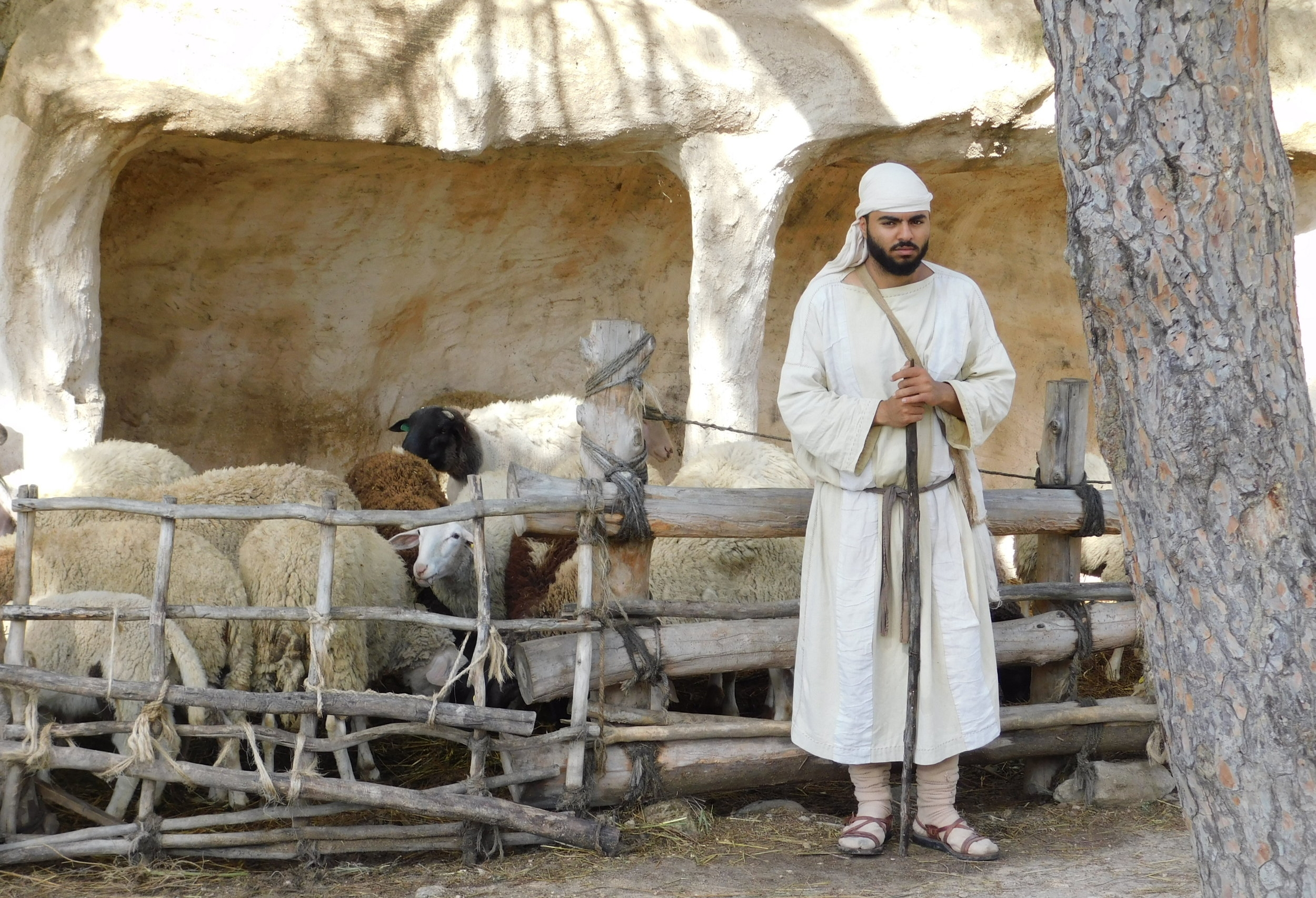 Nazareth Village (a reanactment of the life of Jesus as a boy)