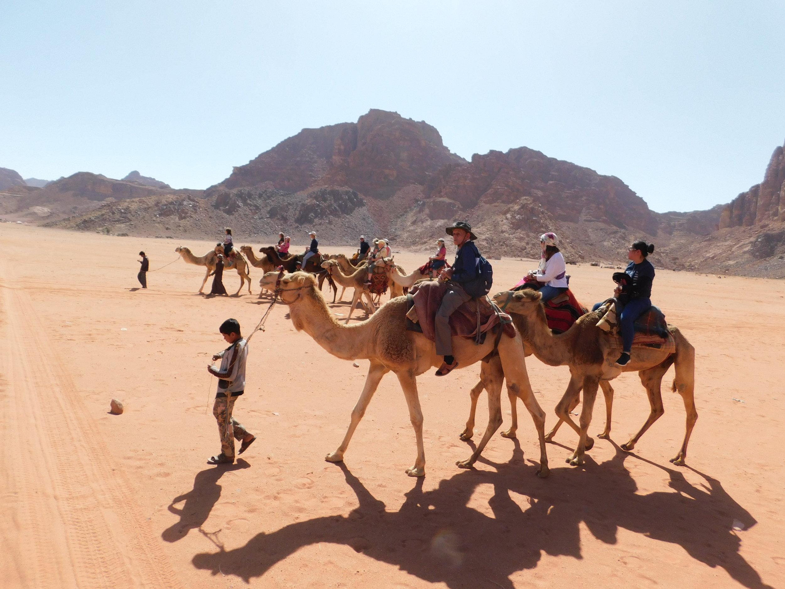 Camel Rides in Wadi Rum, Jordan