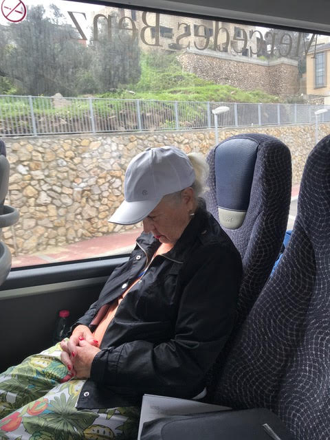 Sometimes a nap on the bus was nice