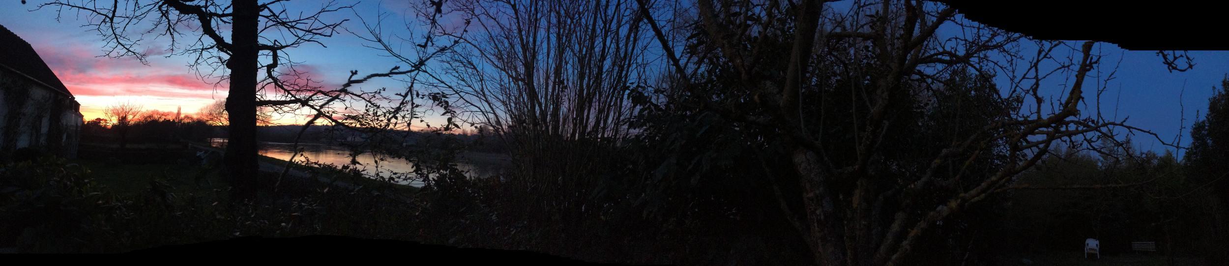 Root Matter Sunset_1  Photograph, 7 Mars 2015  ; copyright © Tennyson Woodbridge, 1963 to present