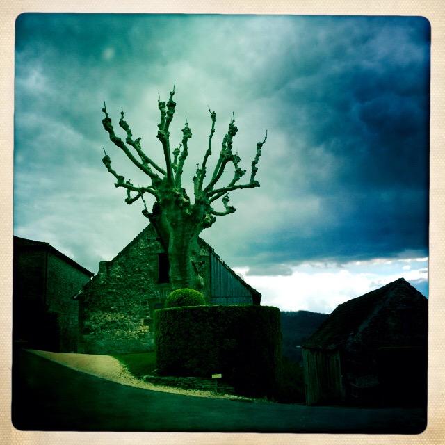 Salutations_Dordogne Photograph, 25Mars15;    copyright © Tennyson Woodbridge, 1963 to present
