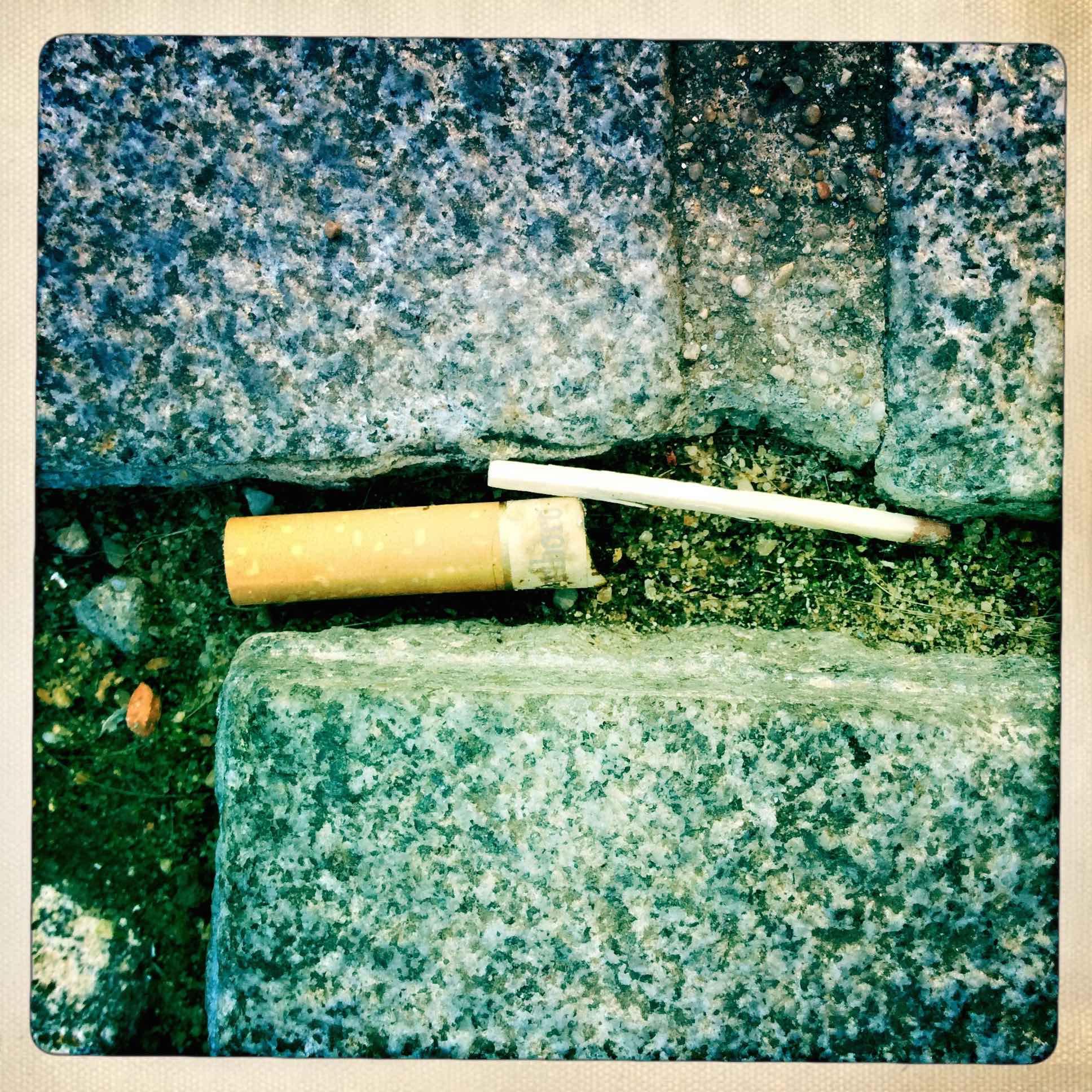 Antwerpen, Preservation Stick  2014; photograph;  Copyright © Tennyson Woodbridge, 1963 to present