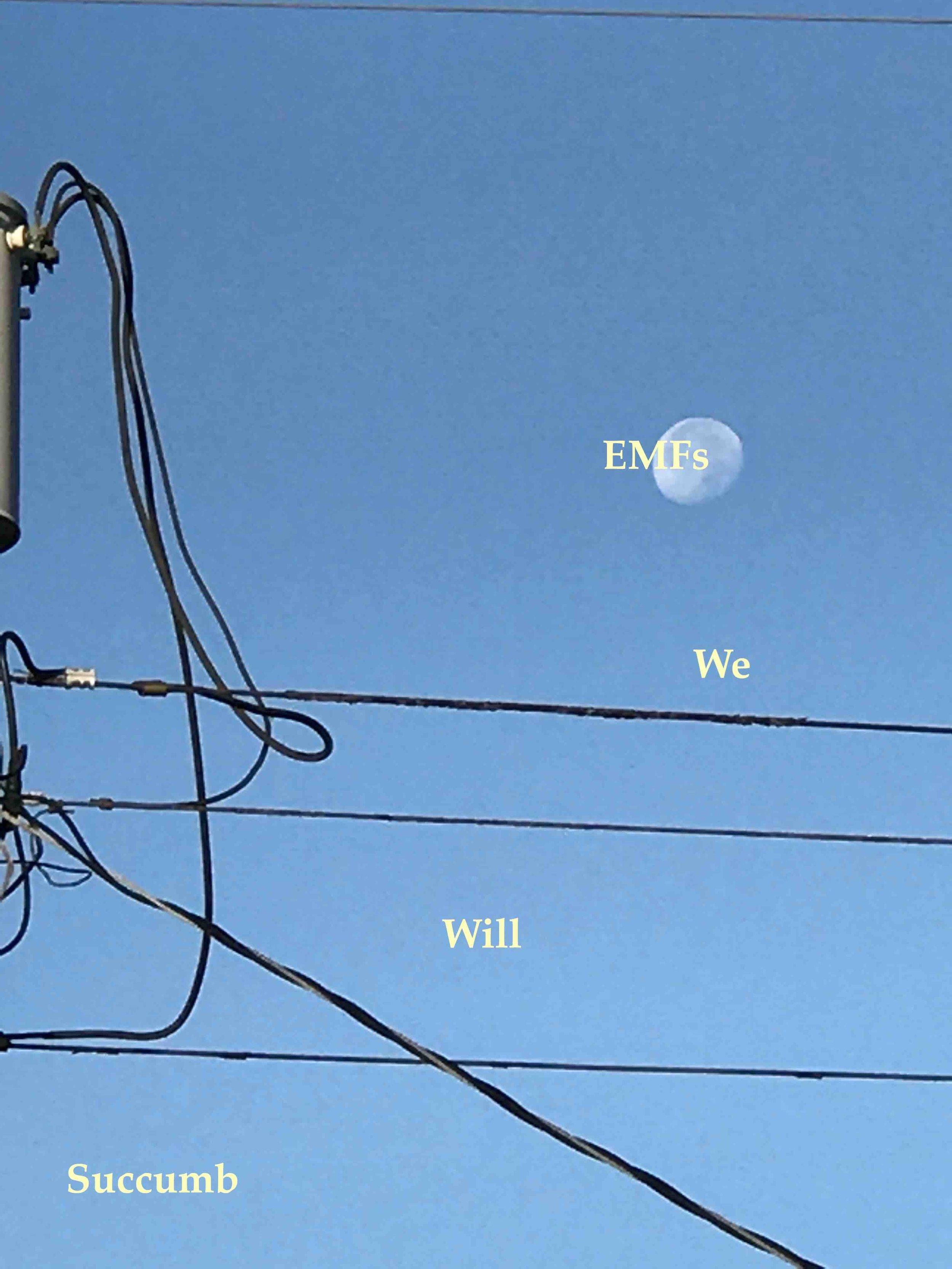 EMFs (we will succumb)  Digital Assembly, October, 2016 Copyright © Tennyson Woodbridge, 1963 to present