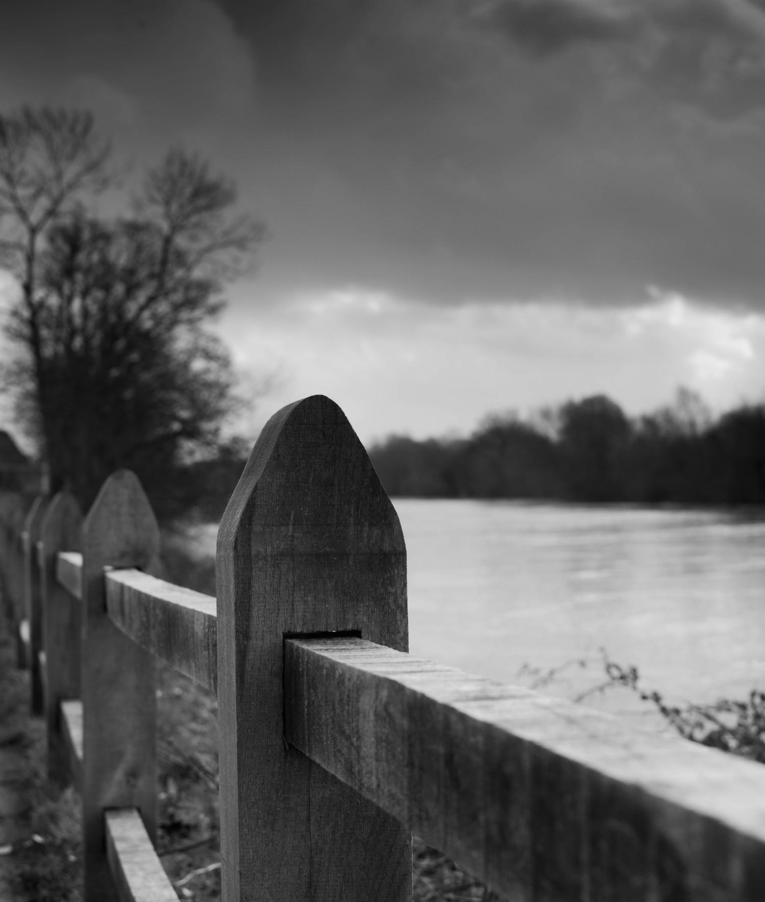 River Thames by Hampton Court
