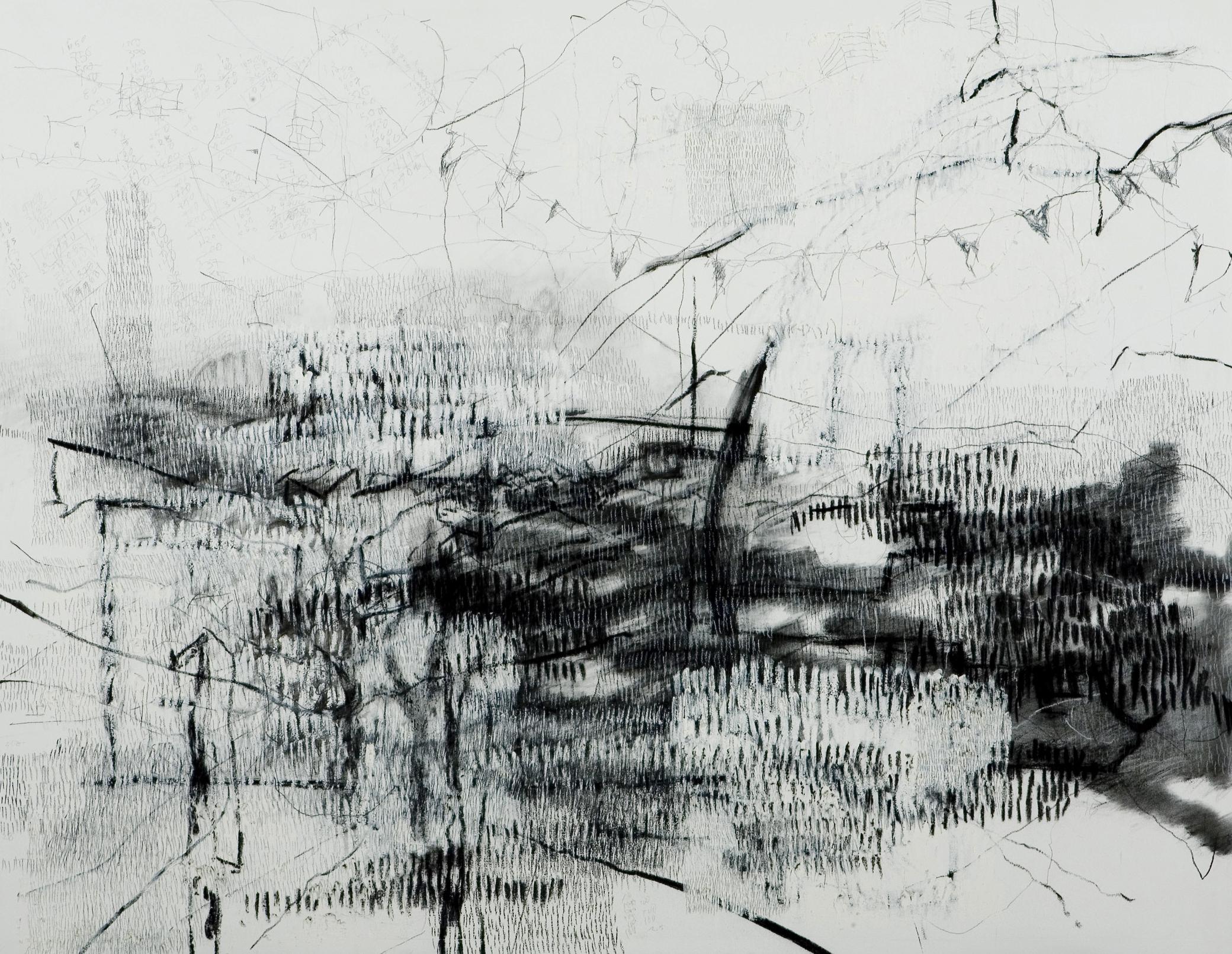 "23,046 Steps to Tania (Phoenix)  Graphite, charcoal, conte, oil stick, 42"" x 54"", 2007"