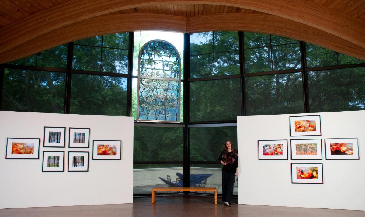 Solo Exhibition, Art Complex Museum, 2015 (photo: Paul Camello)