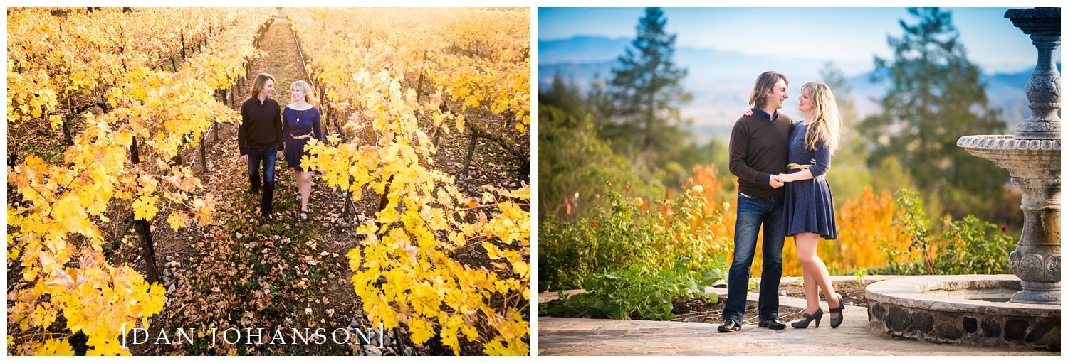 couple-in-love-engagement-wine-country.jpg