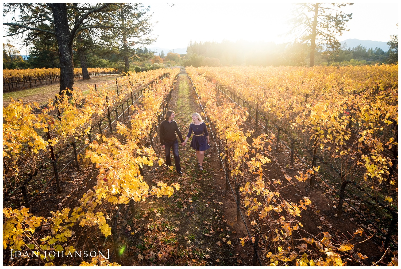private-vineyard-engagement.jpg