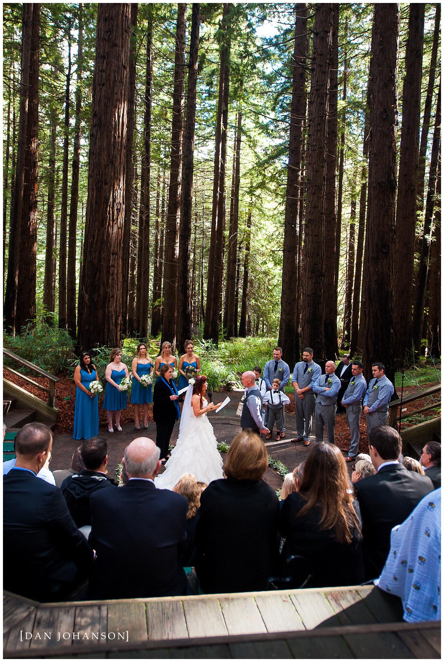 redwood-grove-berkeley-wedding-13.jpg