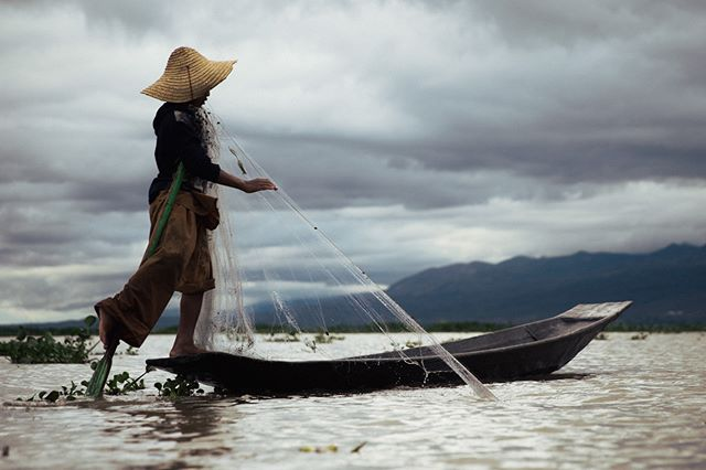 In traditional Burmese style, a young Myanmar fisherman paddles a boat with one leg so he can tend to the fishing net with his hands.