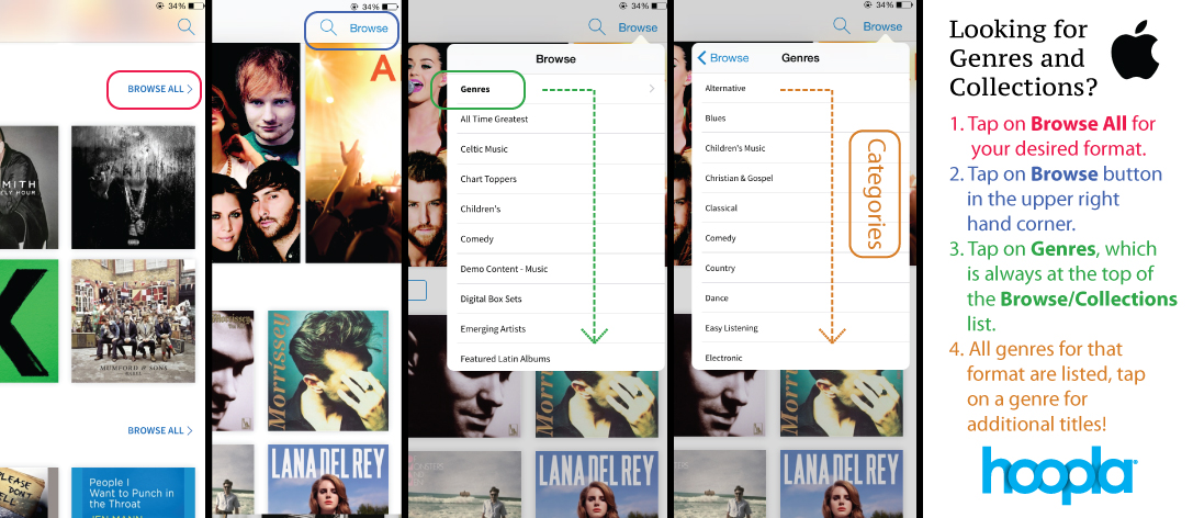 Here are some helpful tips for LightSpeed users looking for genres and collections.