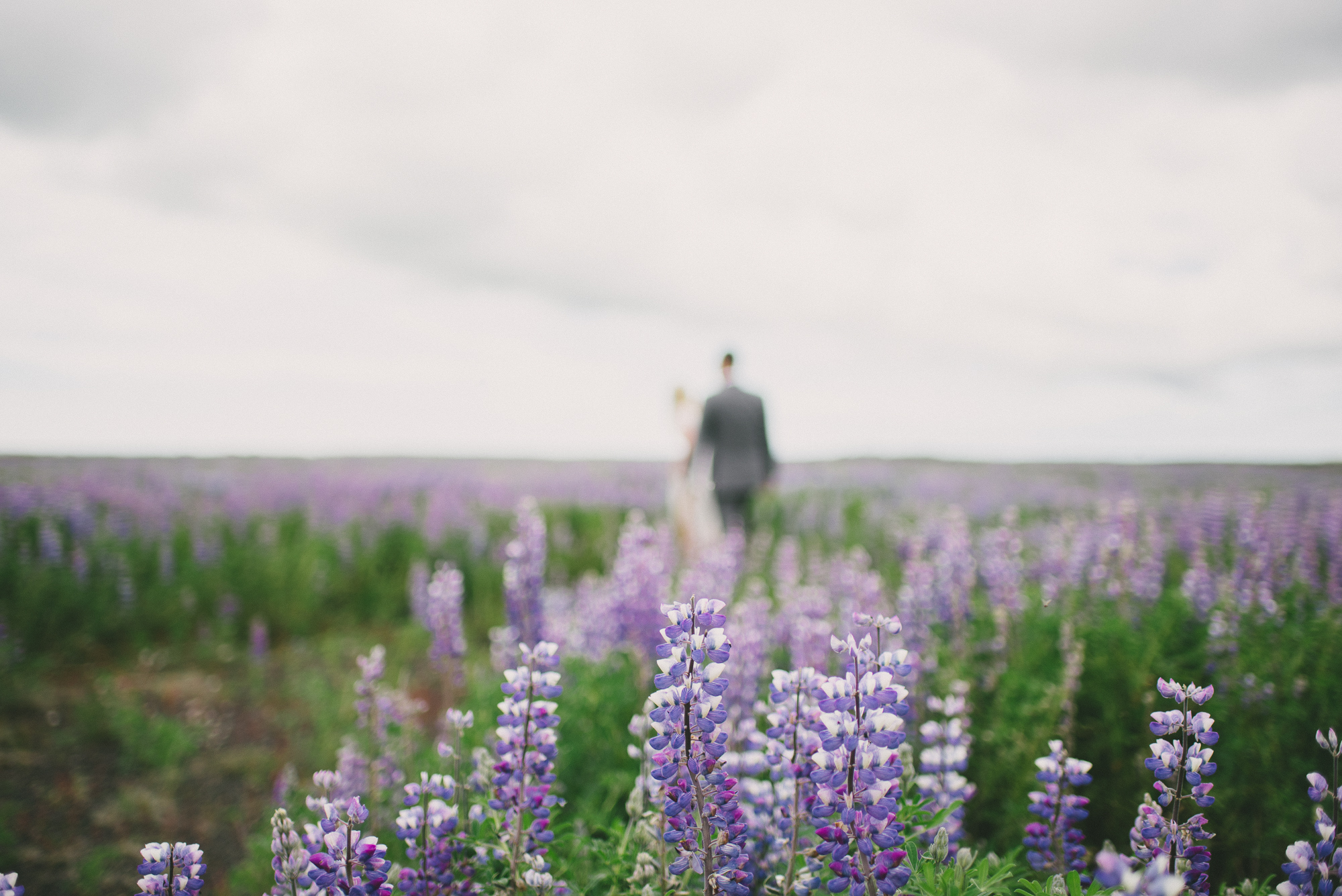 bride and groom iceland field