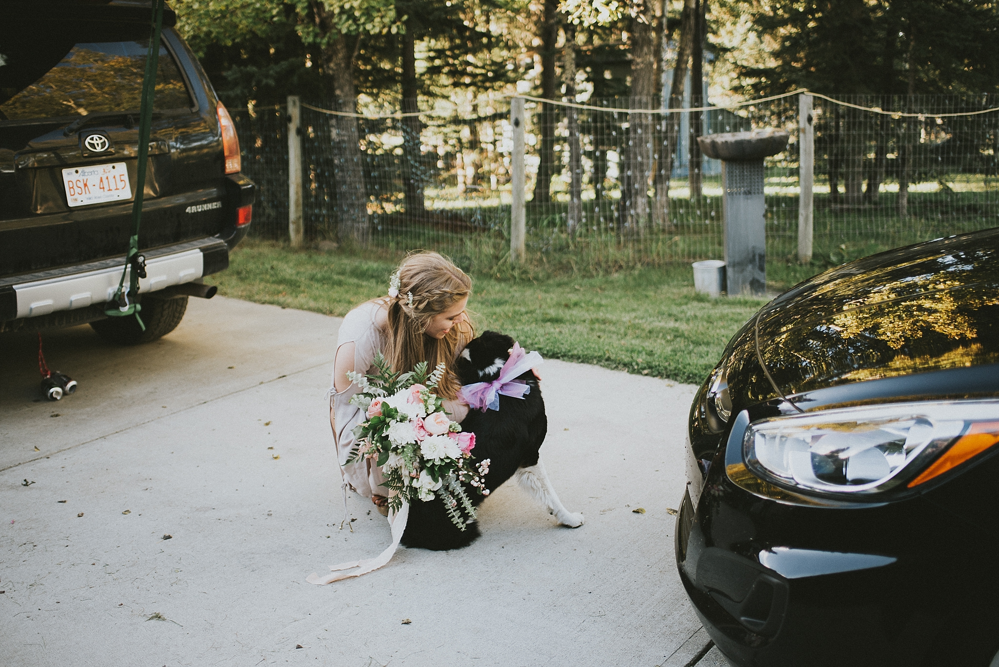 bride elopement candid dog kananaskis