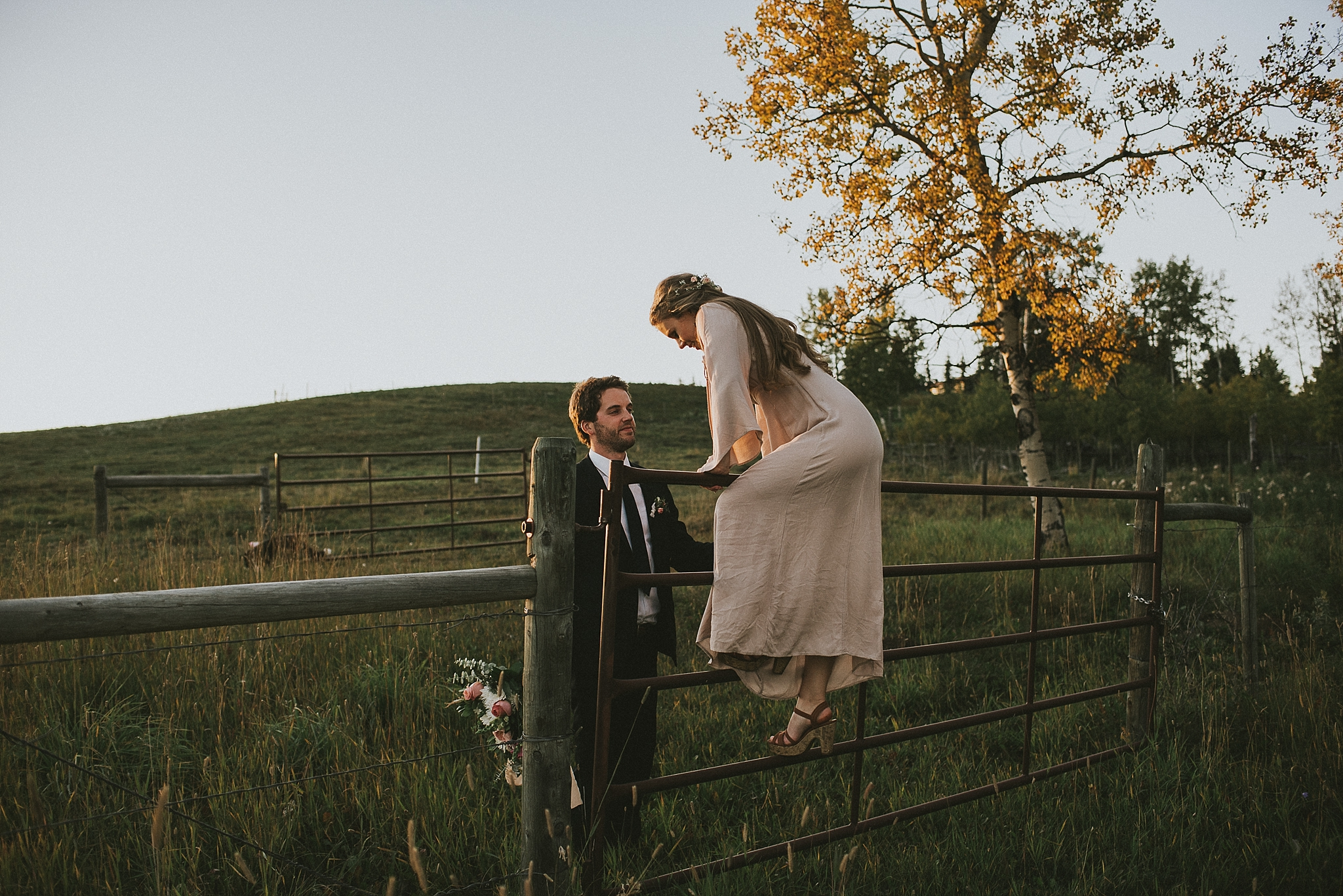 bride groom fence sunset portrait kananaskis elopement