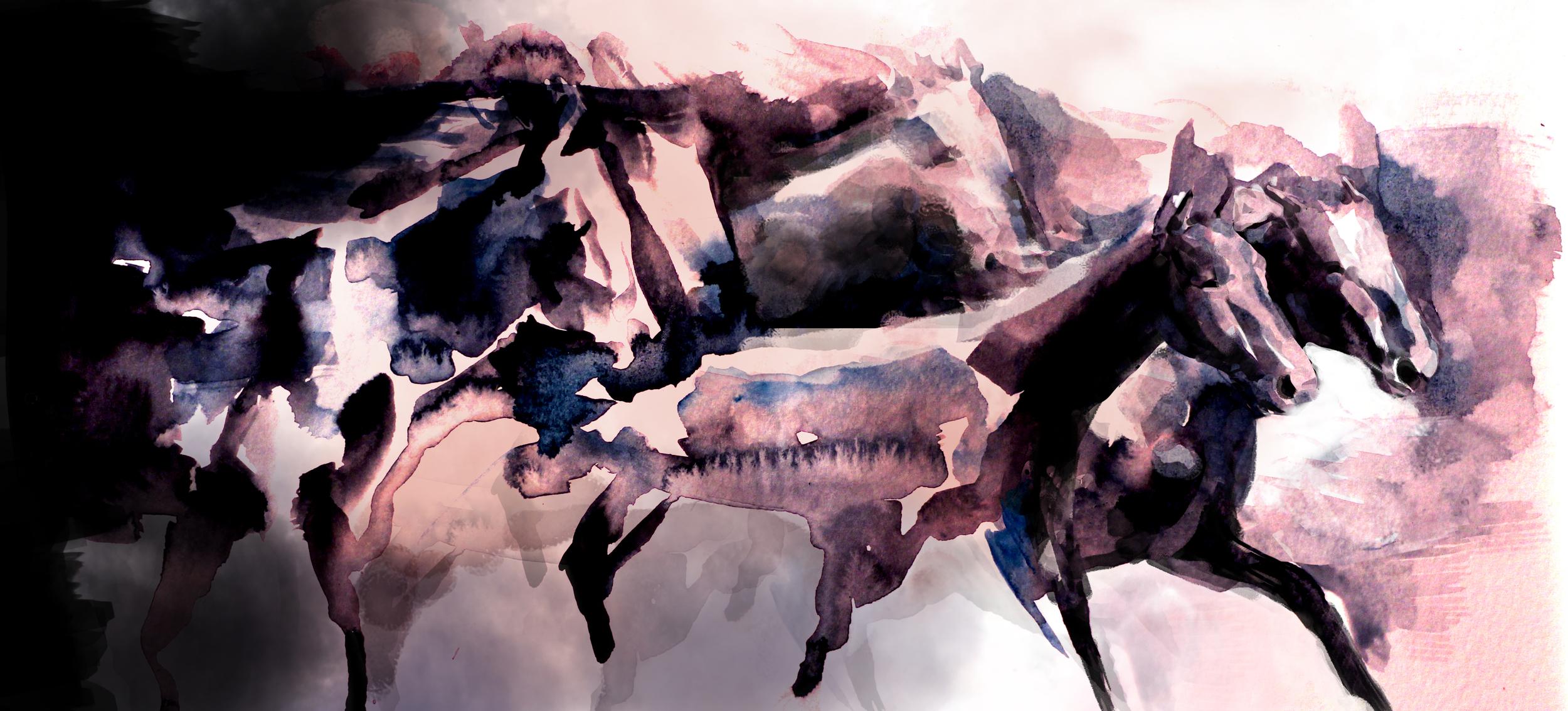 """""""A Cloud of Horses"""""""