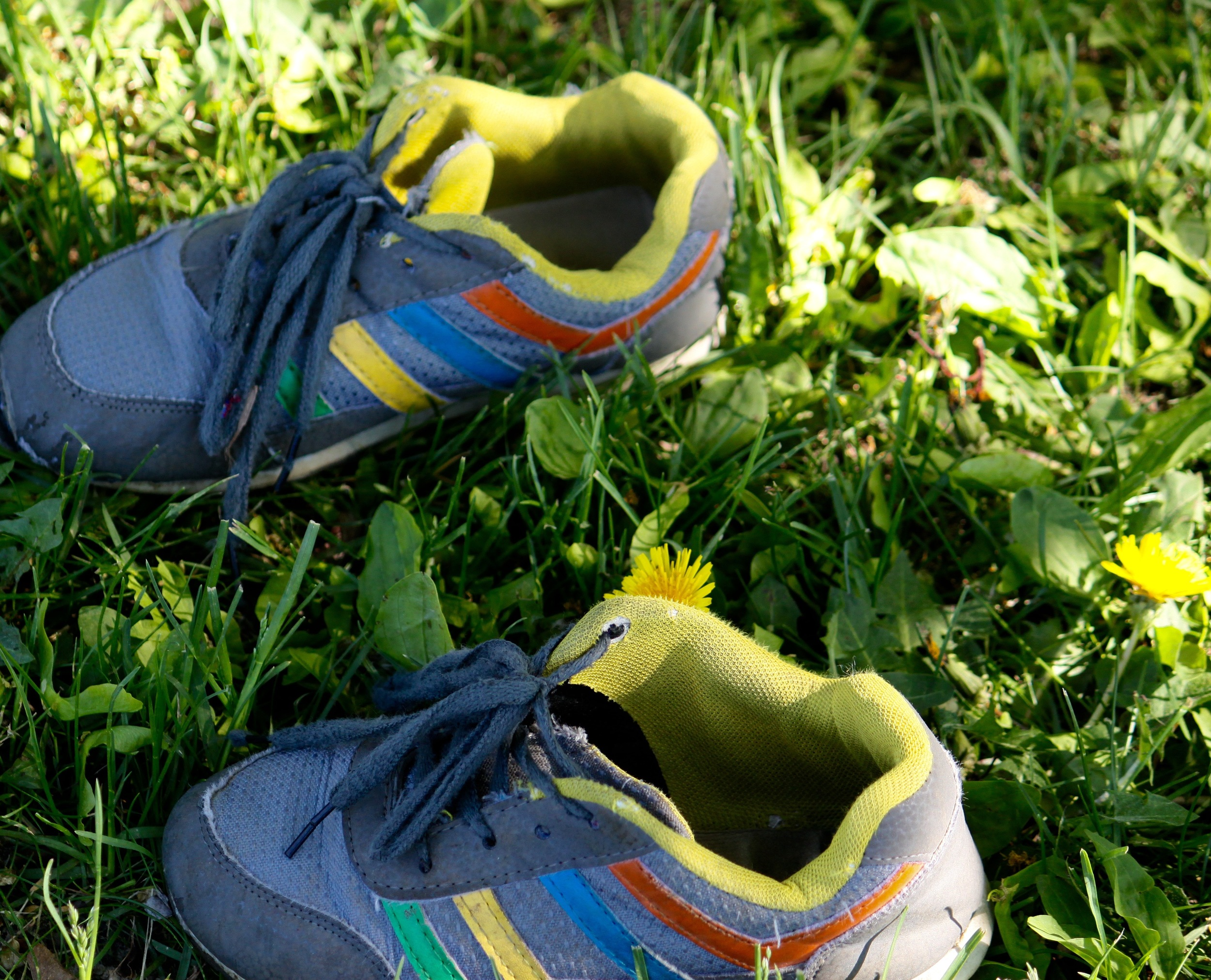 Running shoes embellished in Neon Yellow
