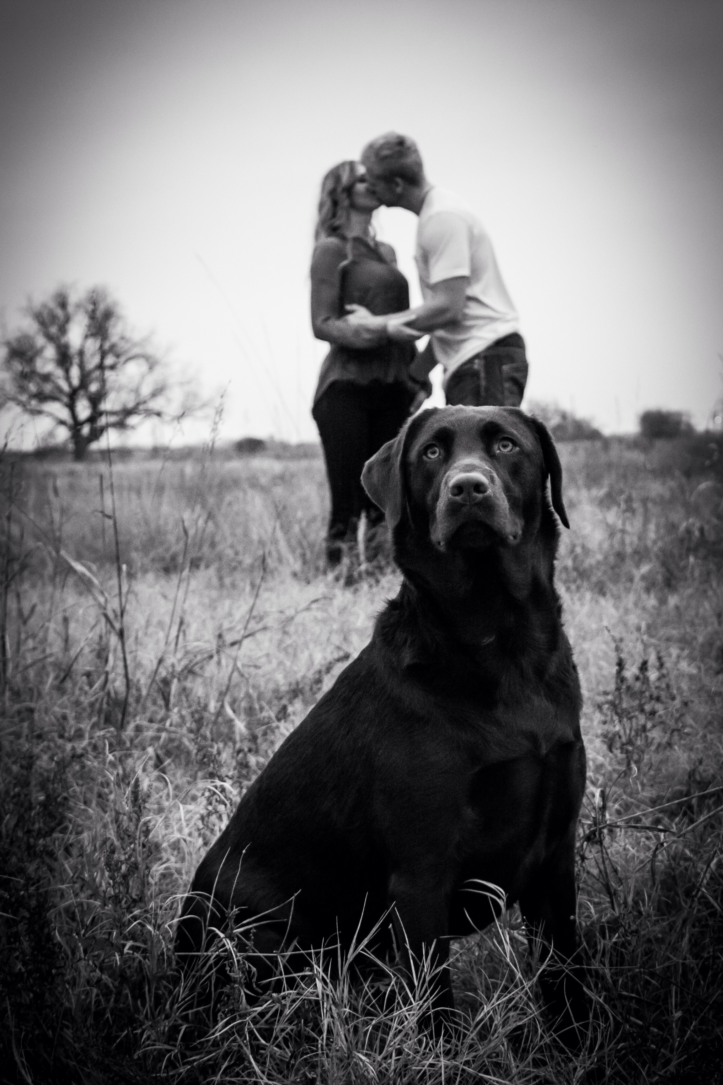 This is one of my favorite ones! Love how Charlie sat long enough to let me get this shot