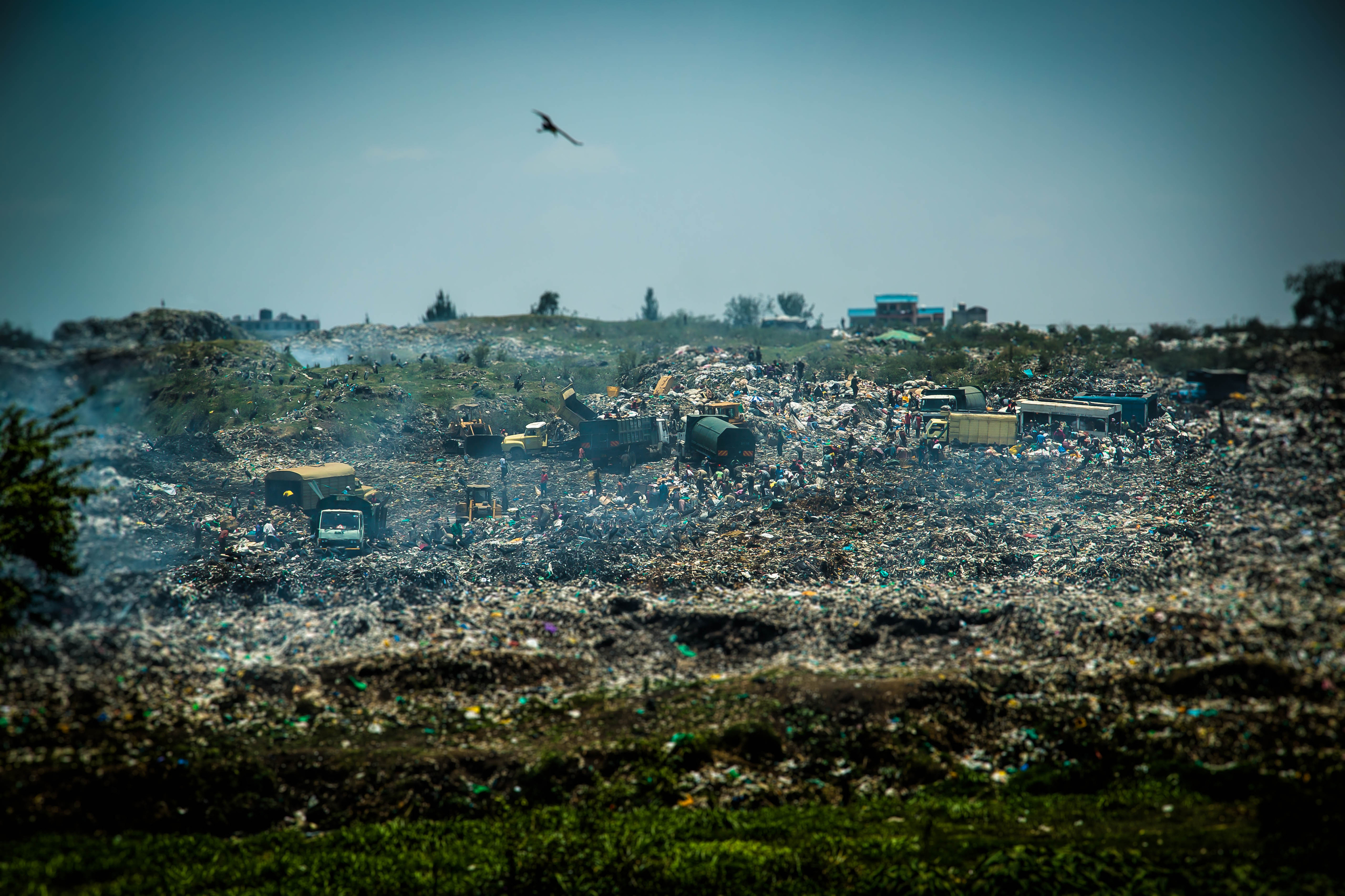 Dumpsite Tilt Shift 1 open.jpg