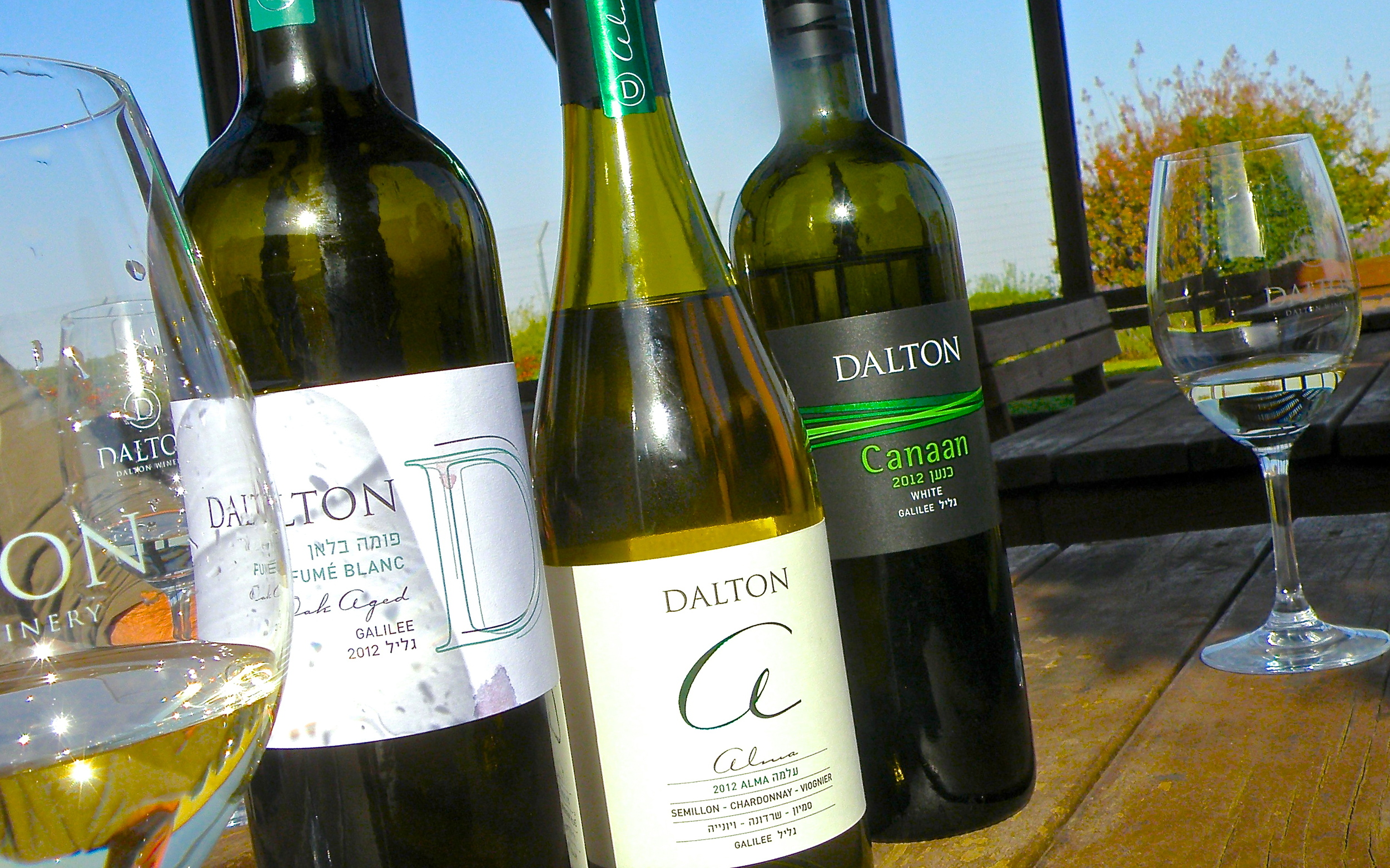 Wine & Cheese Trail