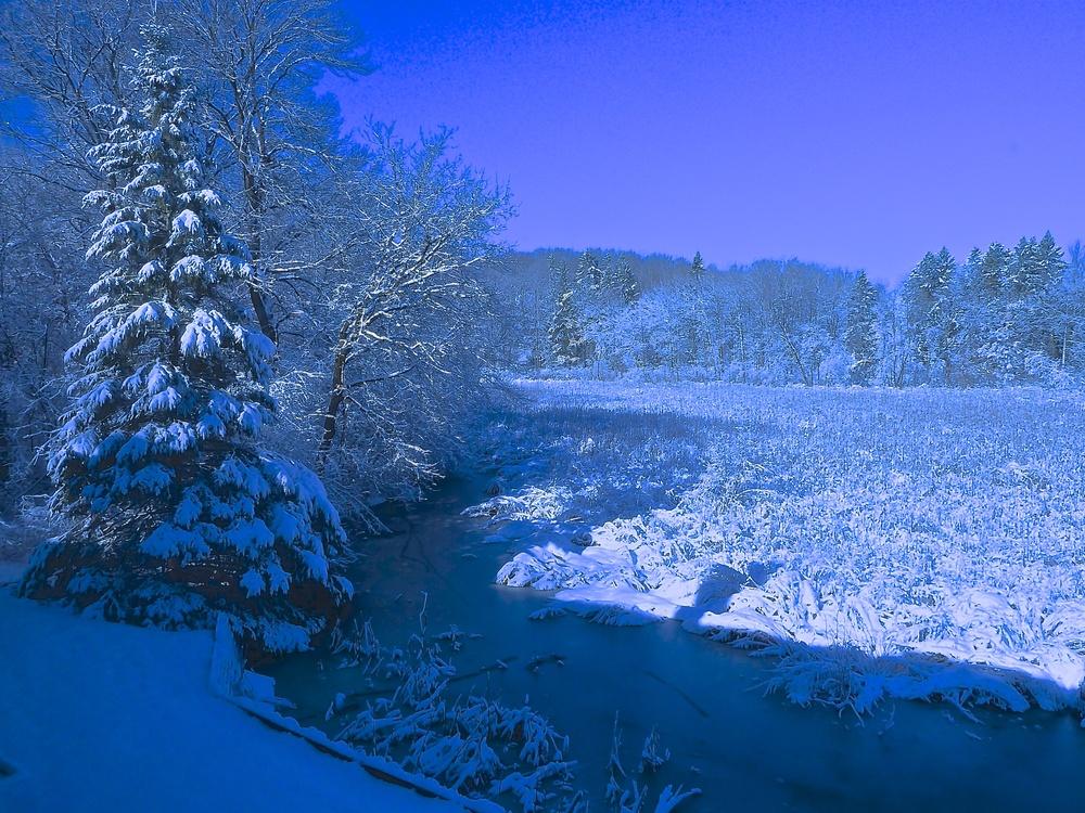 TST-Winter.jpg