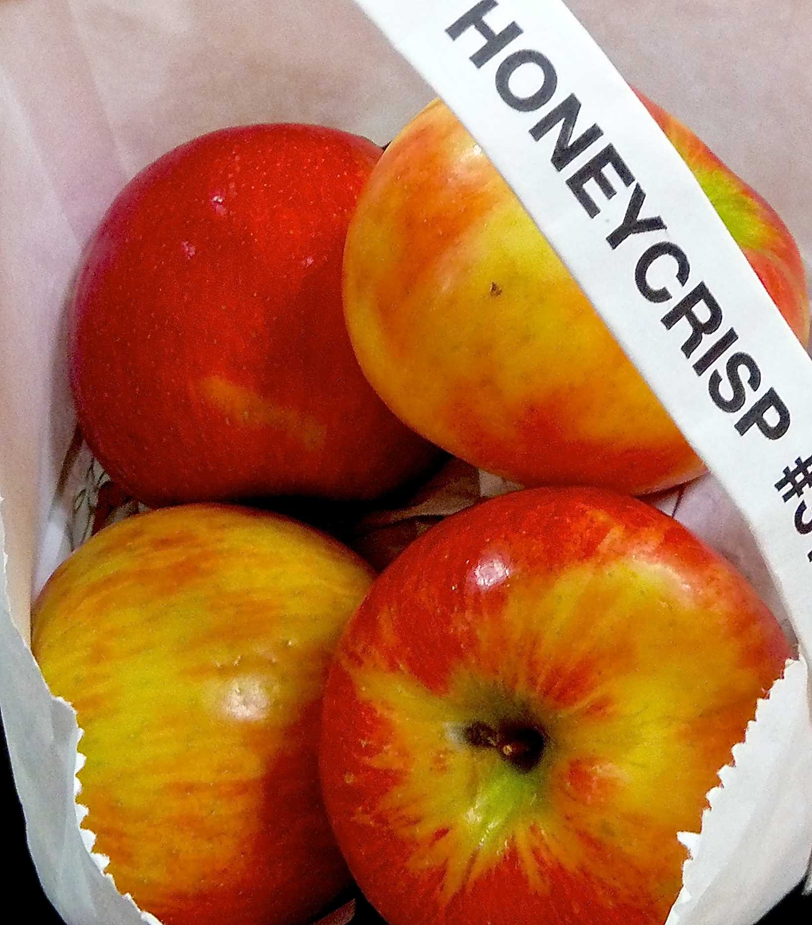 TST_AppleCake_HoneyCrisp_Recipe_photo.jpeg