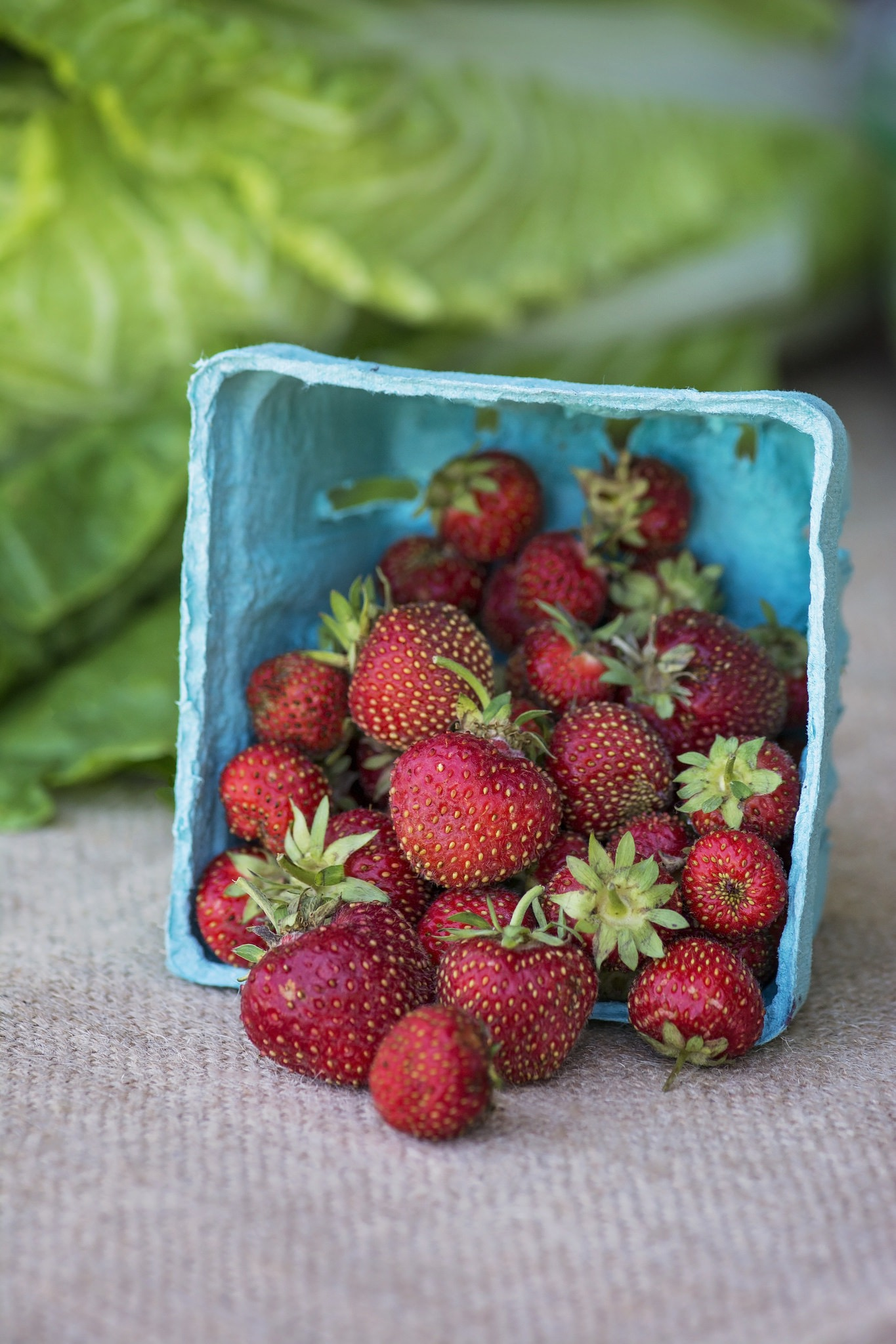 kristine_strawberries_spiritedtable_photot1.jpg