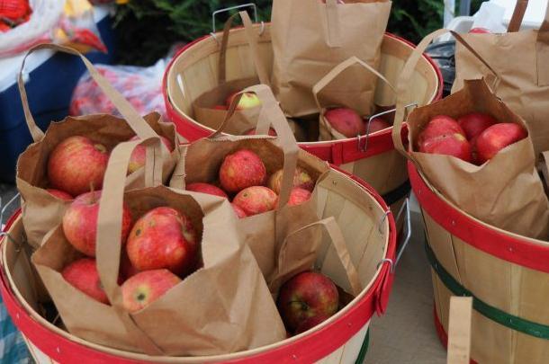 bushels-of-apples-725x408.jpg