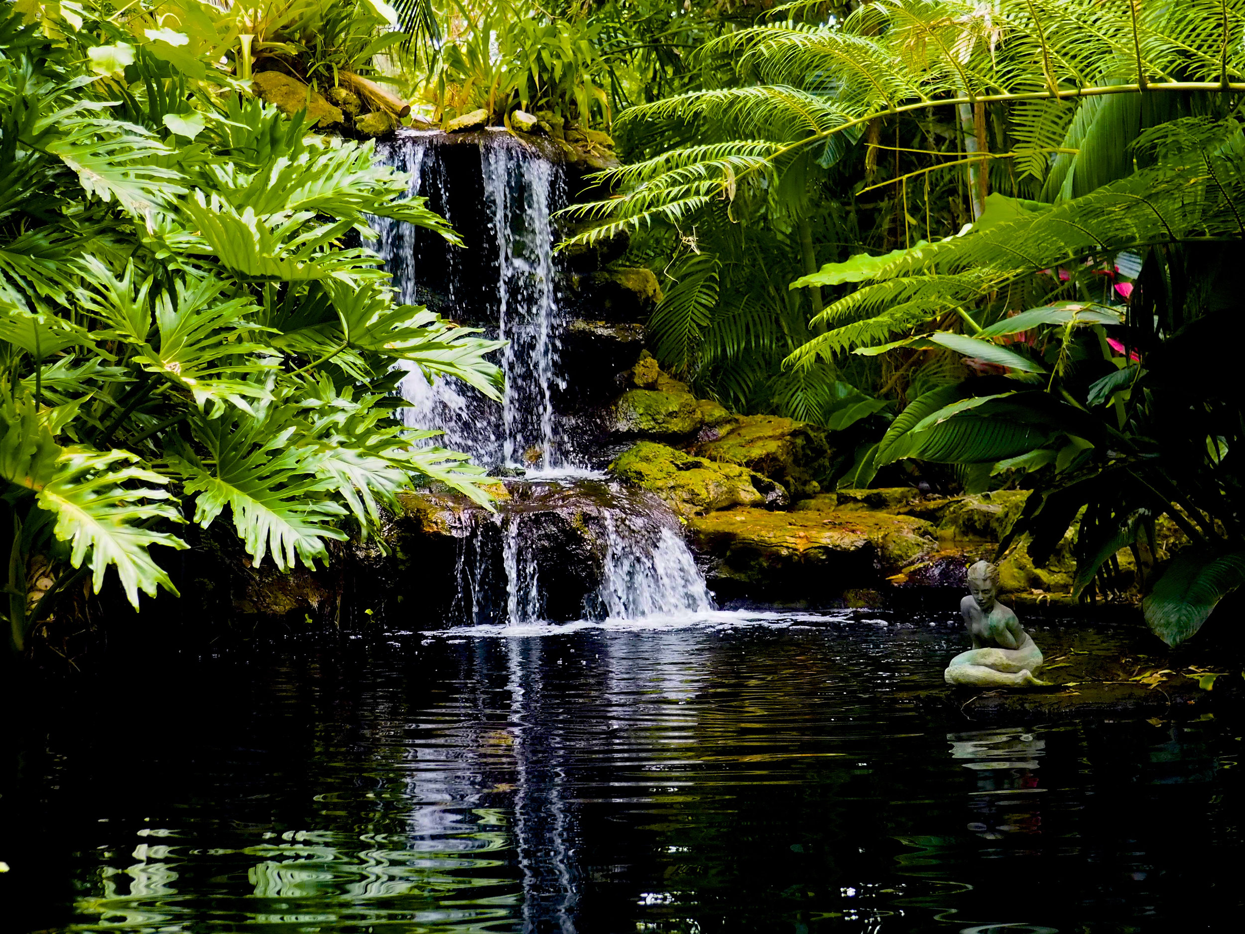 Selby Gardens-Sarasota FL