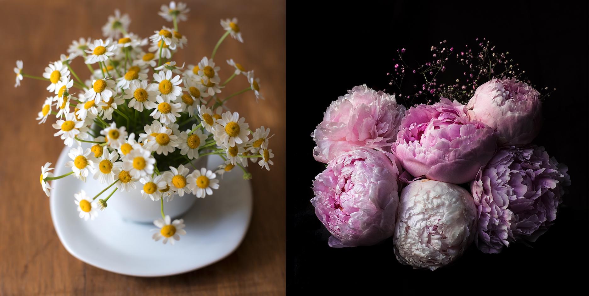 unsplash_flowers_spiritedtable_photo1.jpg