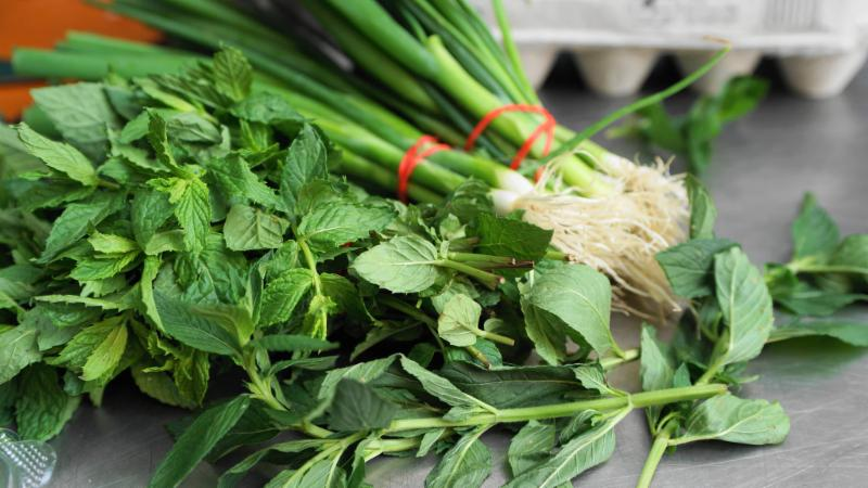 mint and green onions.jpg