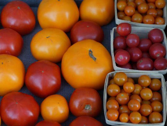 tomatoes-725x408.jpg