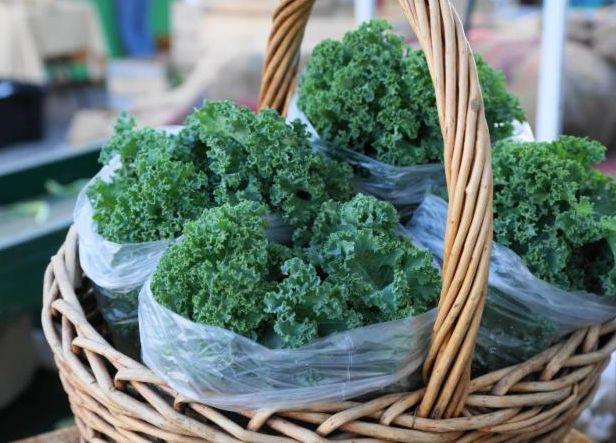 Kale-greens-1024x576.jpg