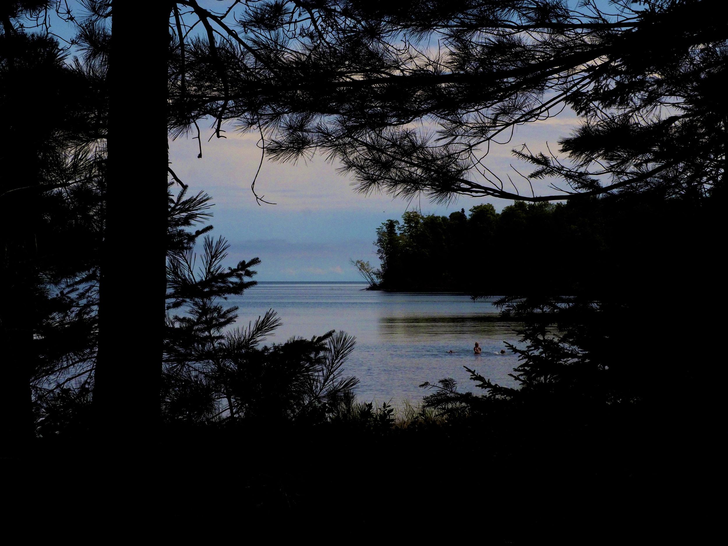 cindi_Madeline_NationalForest_Bog_spiritedtable_photo04.jpg