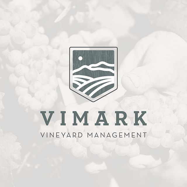 Sharing one of my recent brand identity projects for Vimark Vineyard Management. This client started with an online logo design company that couldn't create what he had envisioned for his company. It was such a pleasure to work with Kris and bring his vision to life in an identity that reflects the confidence and trustworthiness of Vimark. Swipe to see some of the complete identity as well as the original design he came to me with.