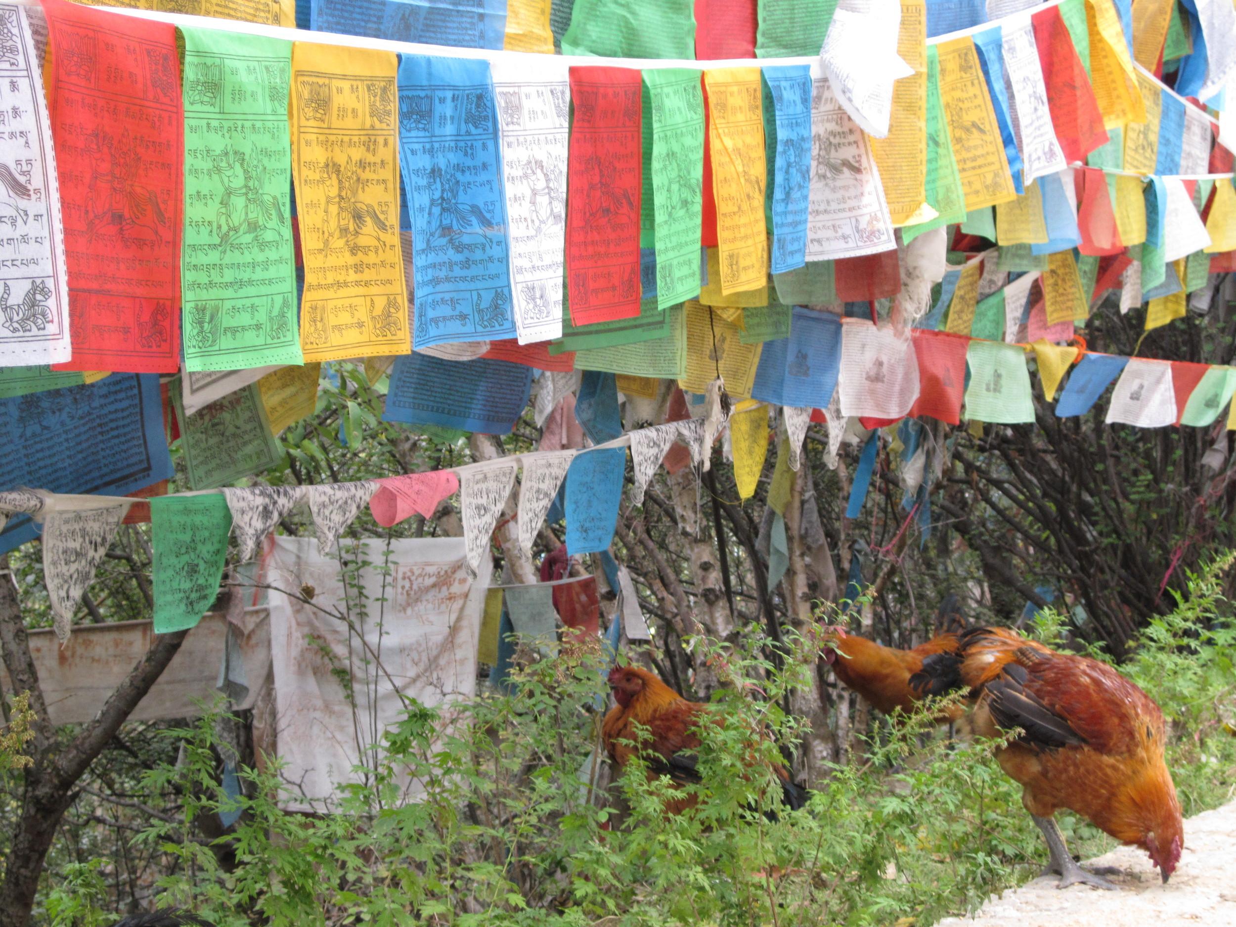Prayer flags in Kathmandu,