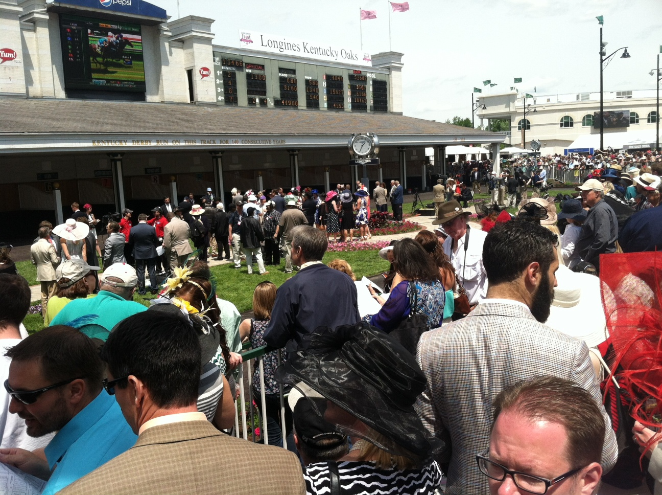 Before races, attendees gather at the stables to check out the horses.