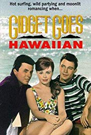 Gidget Goes Hawaiian.jpg