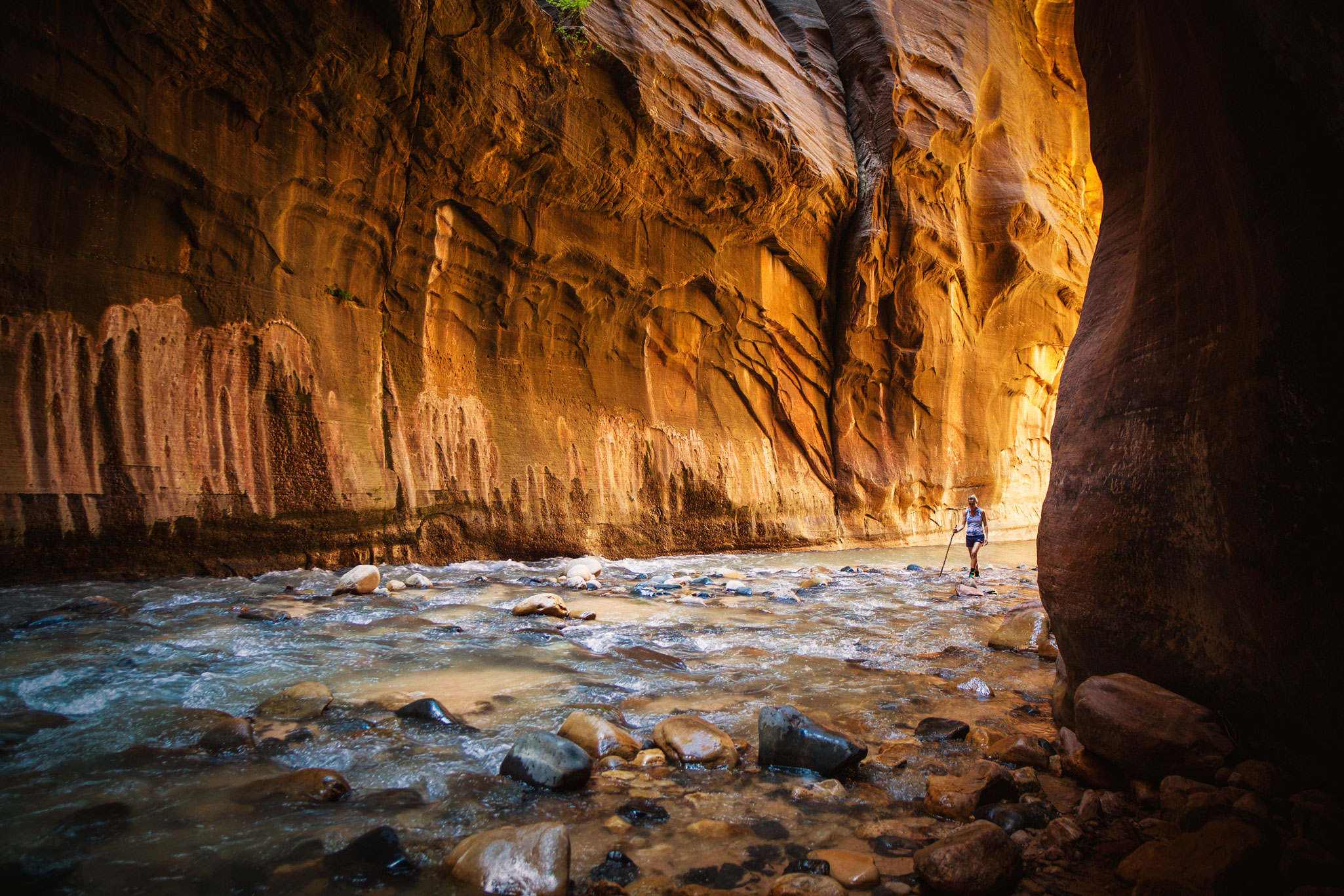 ZION NATIONAL PARK / THE NARROWS