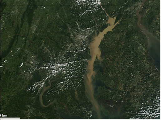 Chesapeake and Potomac Watersheds After Rain
