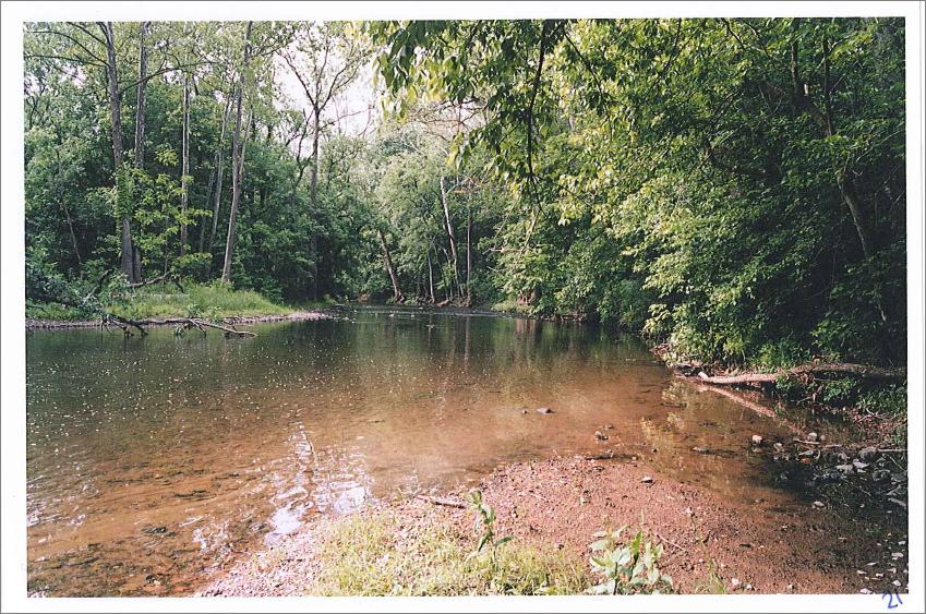 Stalnaker - Cedar Creek.png