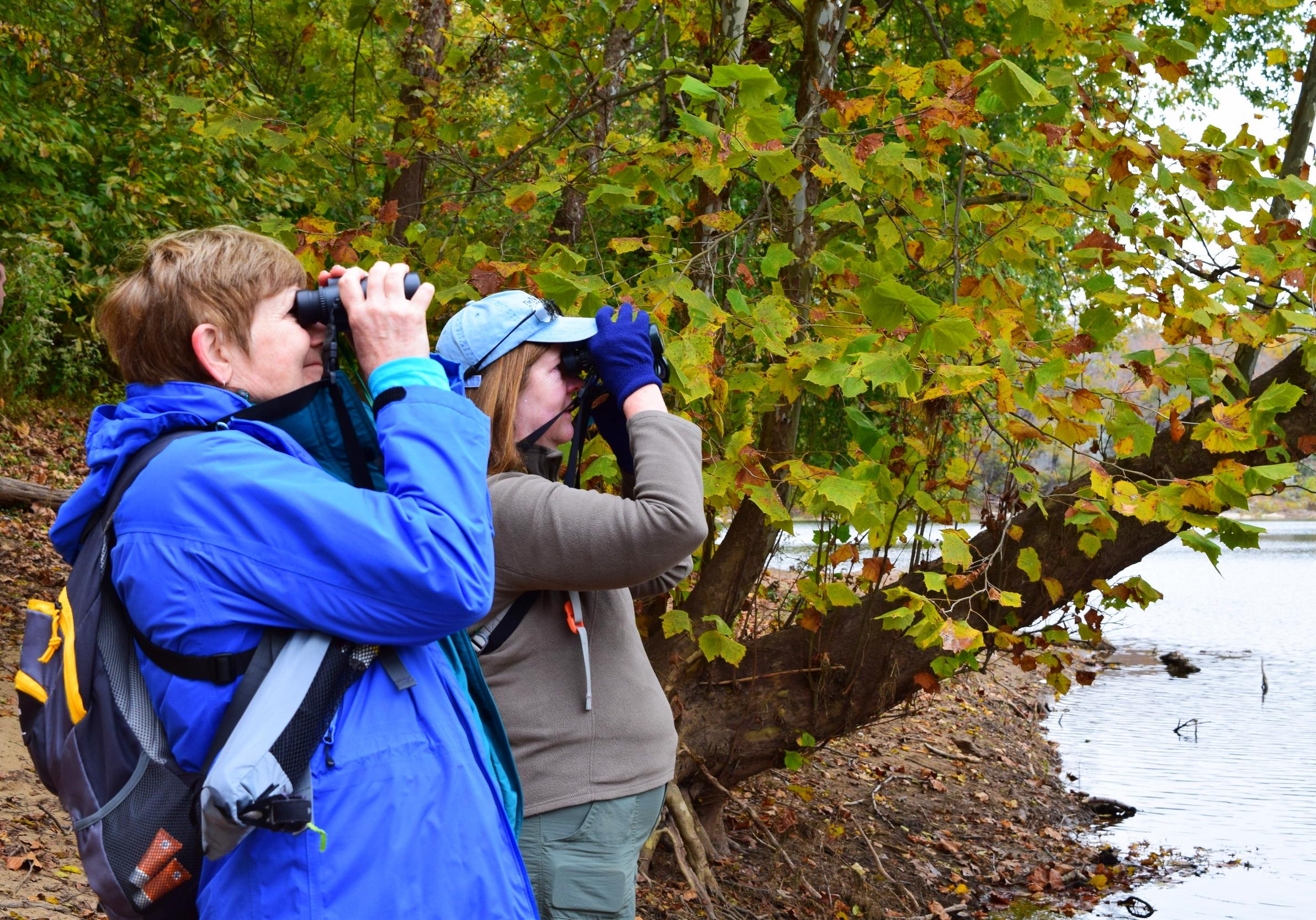 Potomac river binoculars