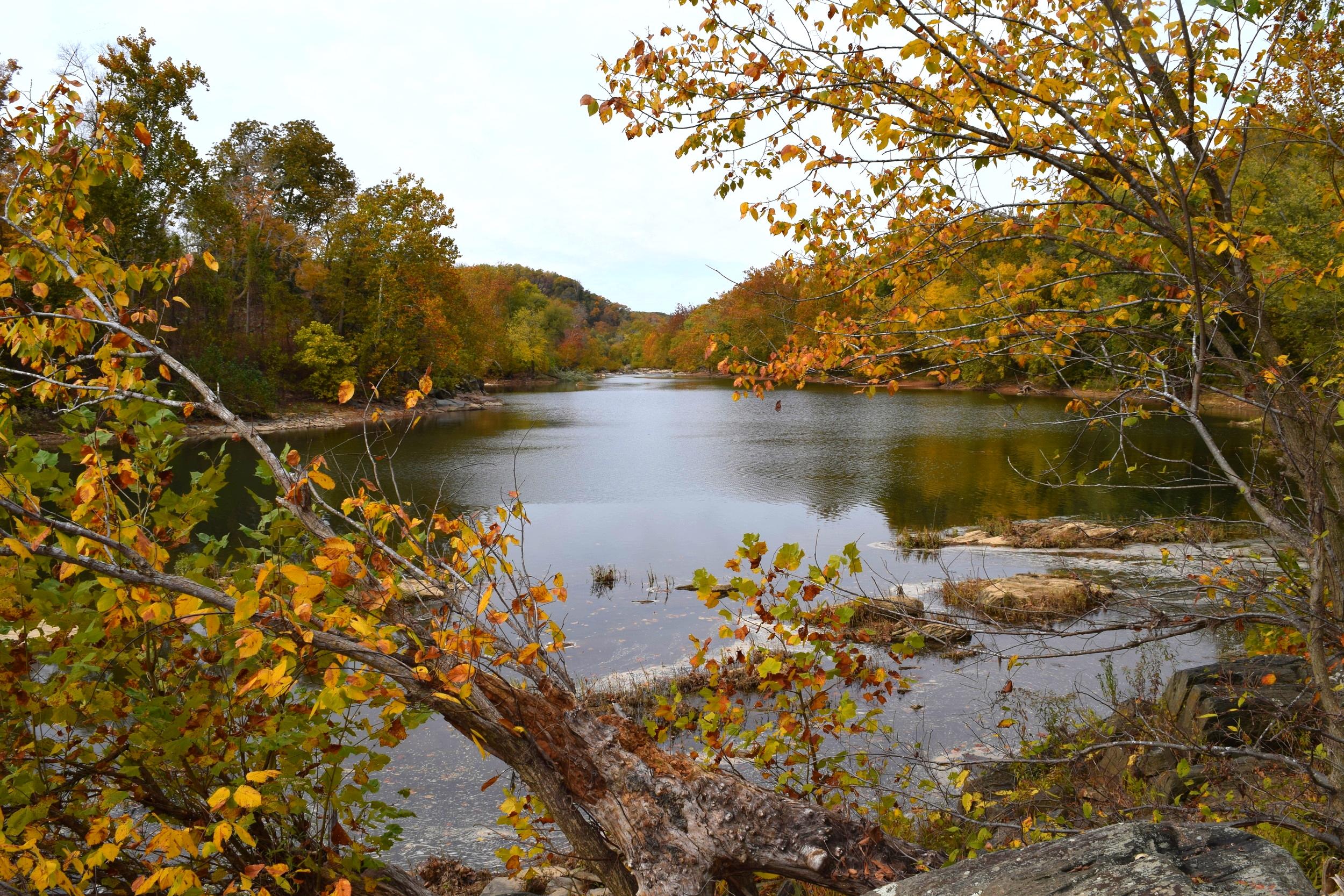 Fall along the Potomac River.