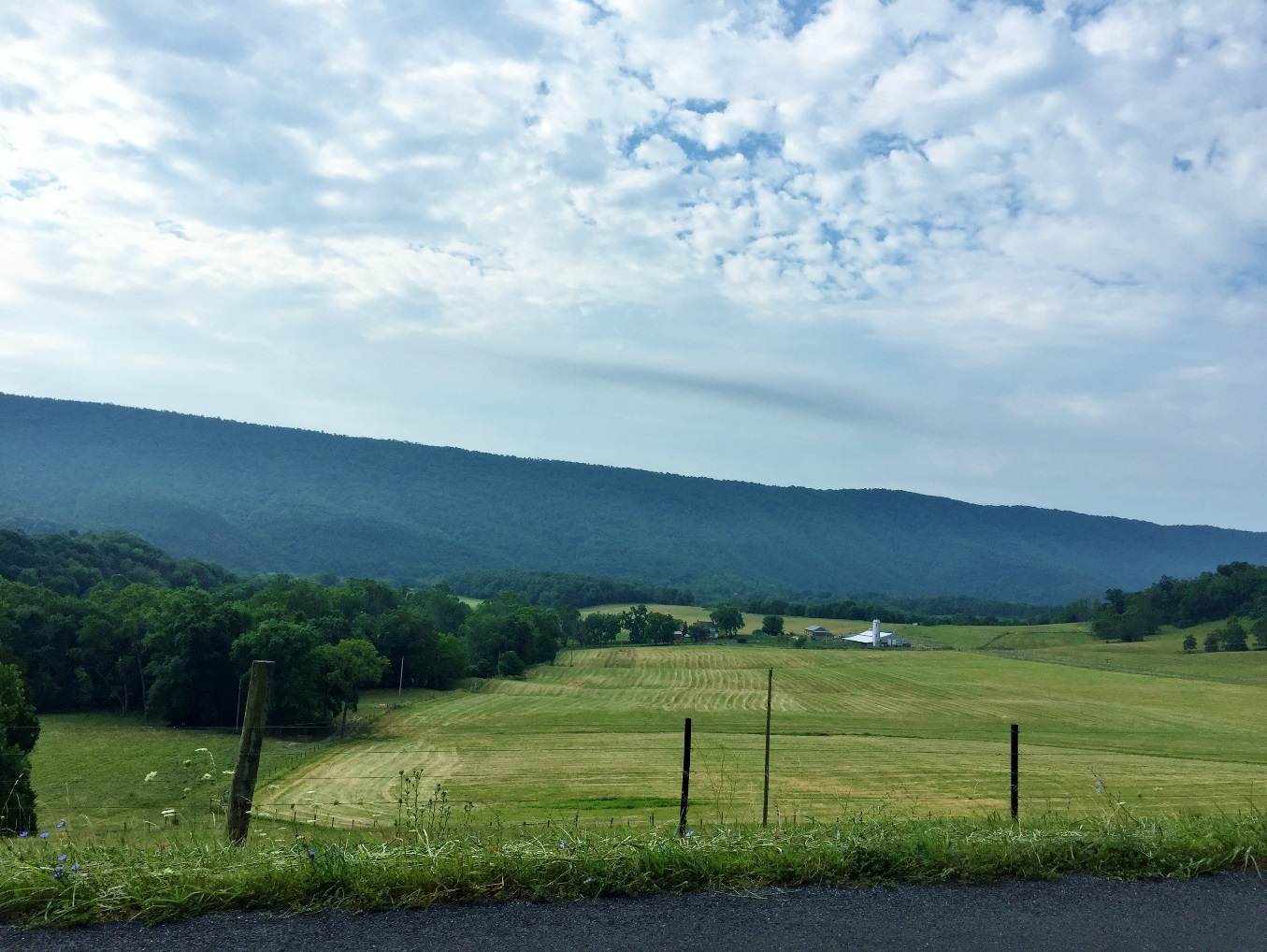 Private conservation easement & George Washington National Forest, Funk Road, Shenandoah County, Virginia. Emily Warner, 2016.