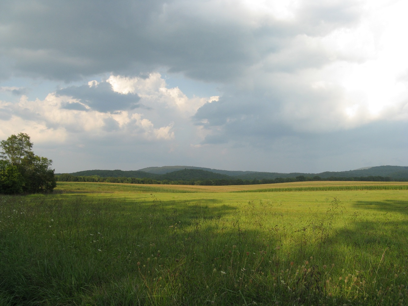 The South Branch River Valley