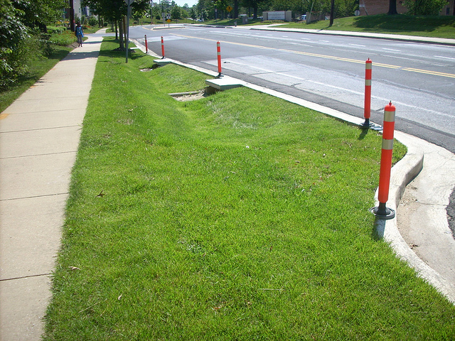 Grass swale curb extension