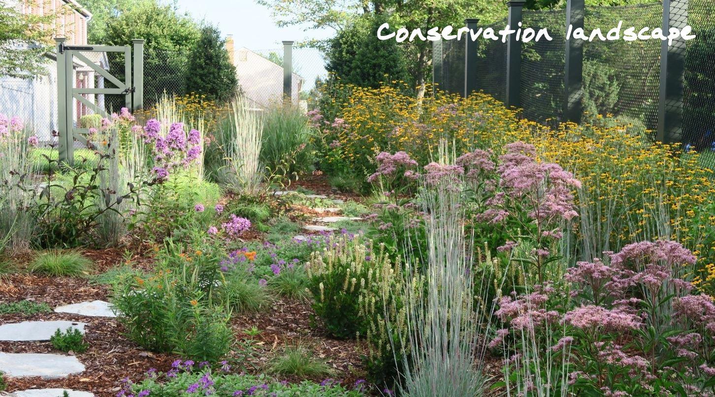 conservation landscape lable.JPG