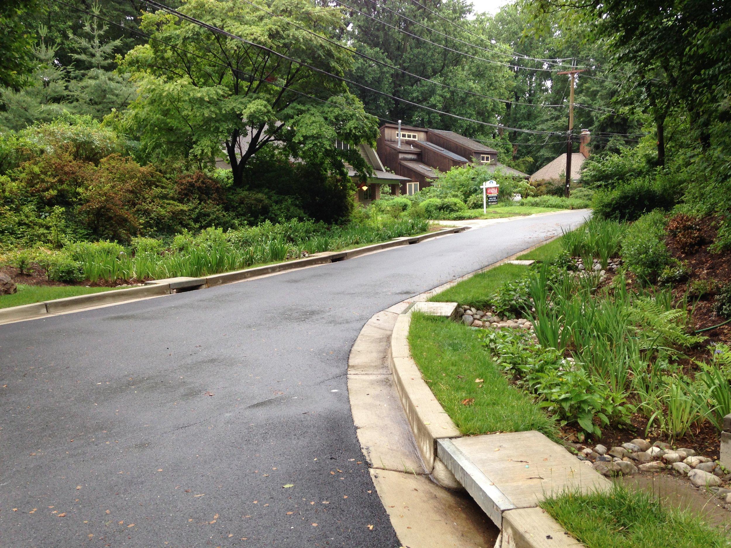 Green street 2.jpg