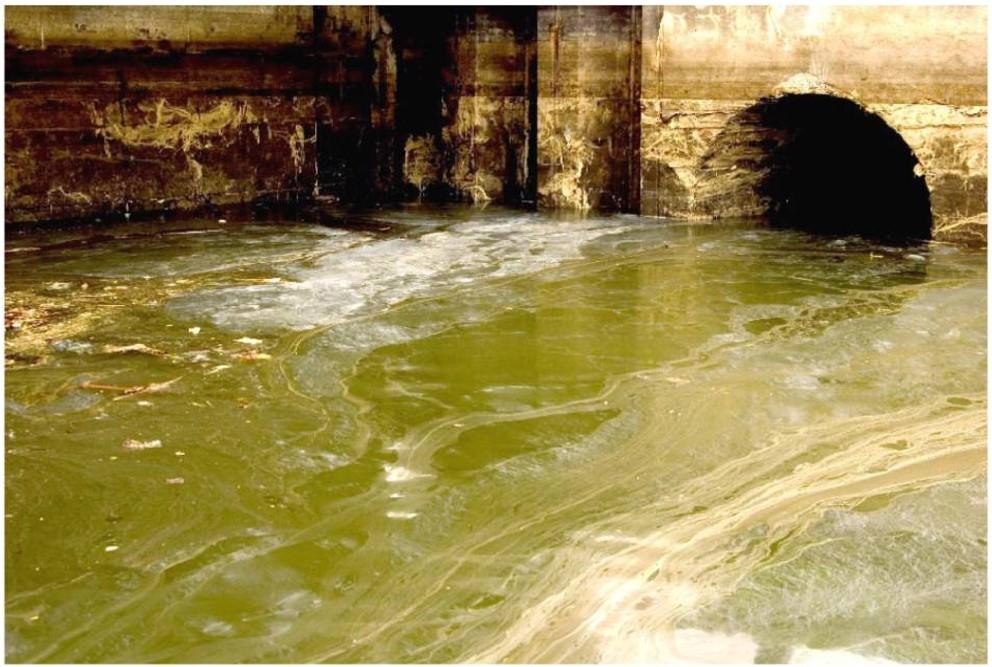 polluted stream.jpg