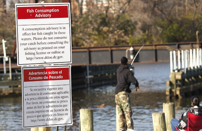 A SiGN ON THE ANACOSTIA RIVER WARNS AGAINST FISH CONSUMPTION DUE TO CONTAMINANT LEVELS. PHOTO BY  DAVE HARP/BAY JOURNAL .